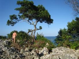 Eden Bay, DR